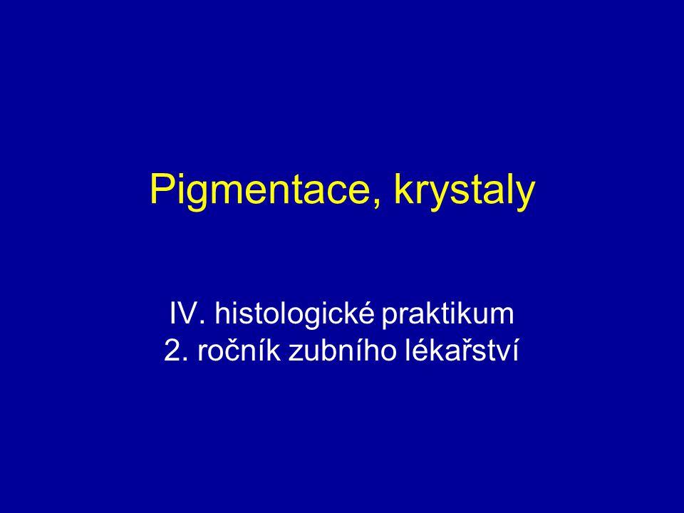 Exogenní pigmentace – azbestóza, azbestová tělíska v plicní tkáni kopie