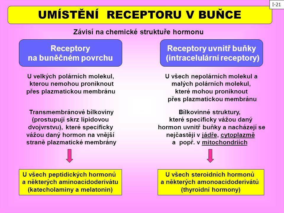 UMÍSTĚNÍ RECEPTORU V BUŇCE Závisí na chemické struktuře hormonu Receptory uvnitř buňky (intracelulární receptory) Receptory na buněčném povrchu U všec