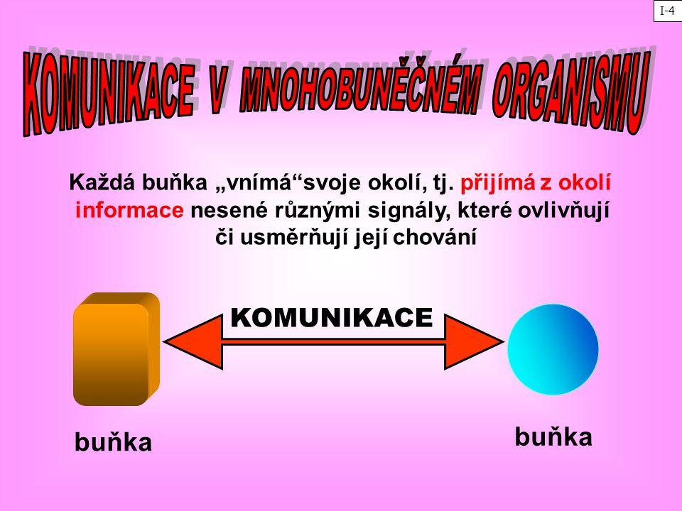 """Každá buňka """"vnímá""""svoje okolí, tj. přijímá z okolí informace nesené různými signály, které ovlivňují či usměrňují její chování buňka KOMUNIKACE I-4"""