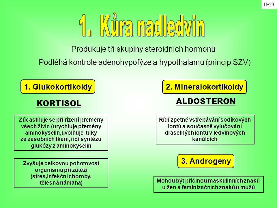 Zúčastňuje se při řízení přeměny všech živin (urychluje přeměny aminokyselin,uvolňuje tuky ze zásobních tkání, řídí syntézu glukózy z aminokyselin Pro