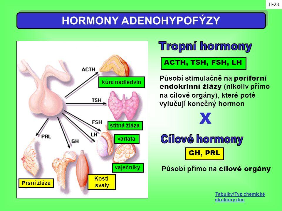 kůra nadledvin štítná žláza varlata vaječníky Kosti svaly Prsní žláza HORMONY ADENOHYPOFÝZY ACTH, TSH, FSH, LH GH, PRL Působí stimulačně na periferní