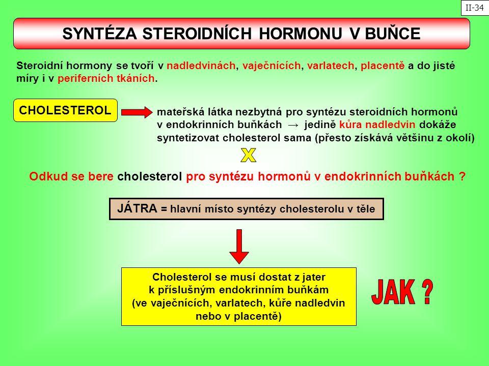 SYNTÉZA STEROIDNÍCH HORMONU V BUŇCE CHOLESTEROL mateřská látka nezbytná pro syntézu steroidních hormonů v endokrinních buňkách → jedině kůra nadledvin