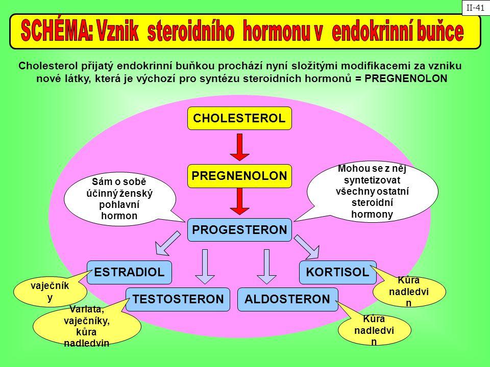 Cholesterol přijatý endokrinní buňkou prochází nyní složitými modifikacemi za vzniku nové látky, která je výchozí pro syntézu steroidních hormonů = PR