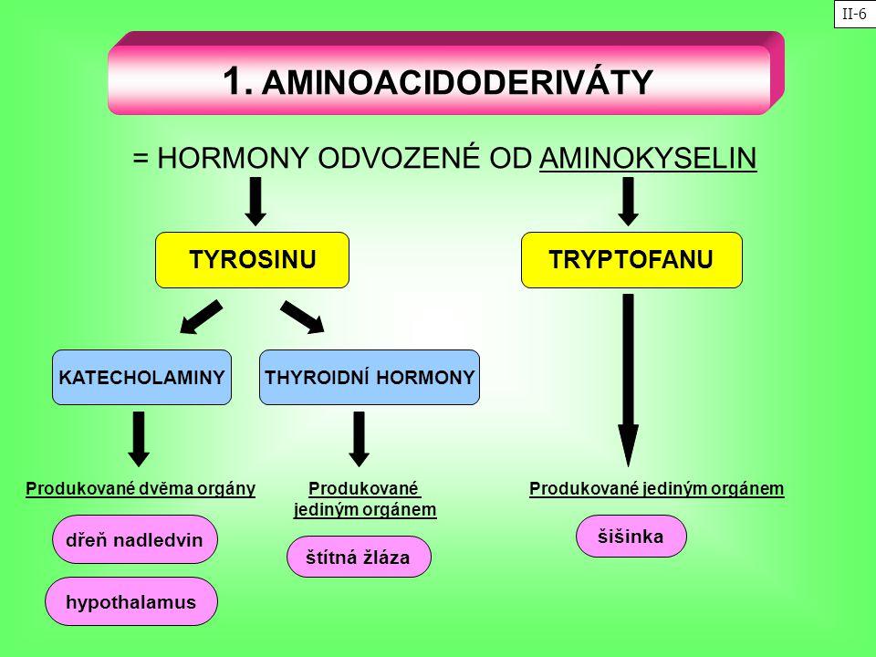 = HORMONY ODVOZENÉ OD AMINOKYSELIN 1. AMINOACIDODERIVÁTY TYROSINU KATECHOLAMINY TRYPTOFANU THYROIDNÍ HORMONY dřeň nadledvin hypothalamus šišinka štítn