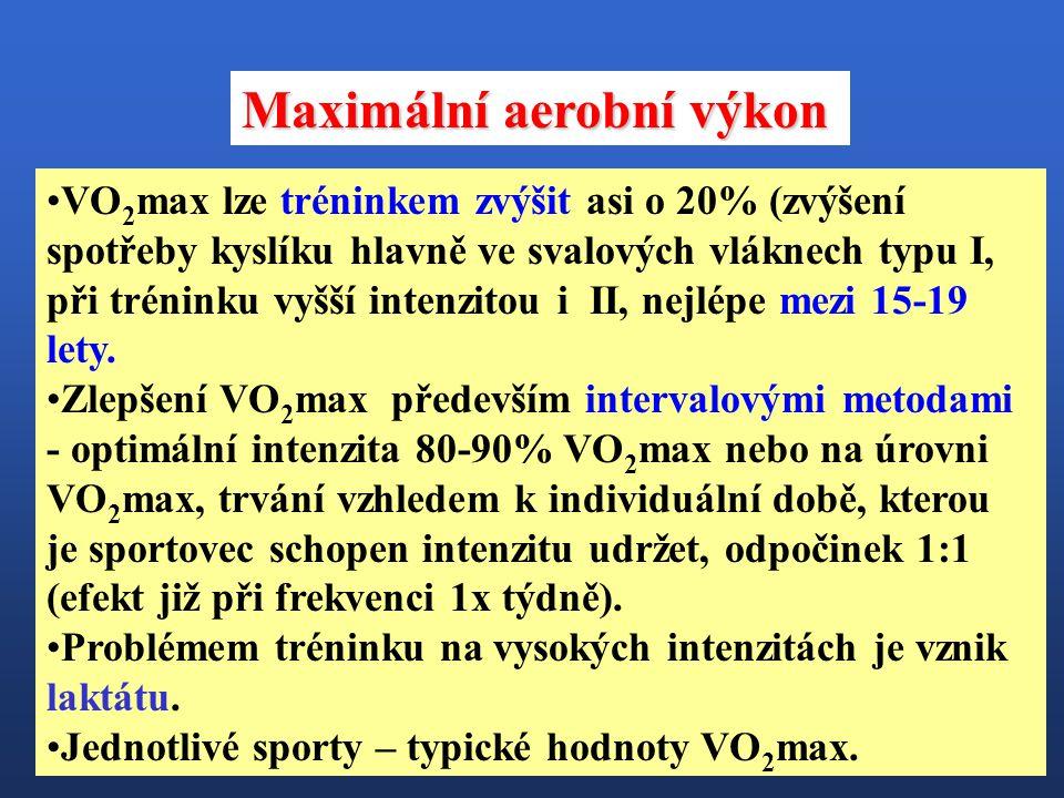 VO 2 max lze tréninkem zvýšit asi o 20% (zvýšení spotřeby kyslíku hlavně ve svalových vláknech typu I, při tréninku vyšší intenzitou i II, nejlépe mez