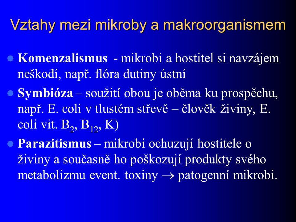 Vztahy mezi mikroby a makroorganismem Komenzalismus - mikrobi a hostitel si navzájem neškodí, např. flóra dutiny ústní Symbióza – soužití obou je oběm