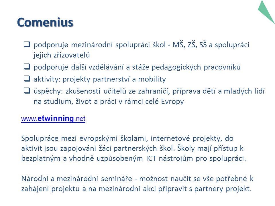 Comenius  podporuje mezinárodní spolupráci škol - MŠ, ZŠ, SŠ a spolupráci jejich zřizovatelů  podporuje další vzdělávání a stáže pedagogických pracovníků  aktivity: projekty partnerství a mobility  úspěchy: zkušenosti učitelů ze zahraničí, příprava dětí a mladých lidí na studium, život a práci v rámci celé Evropy www.