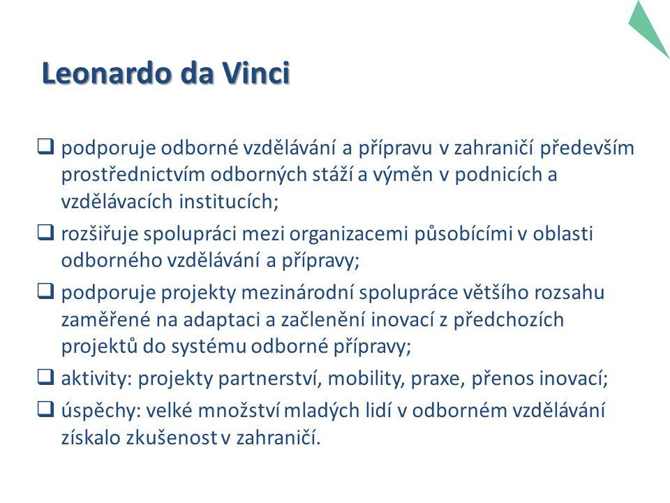 Leonardo da Vinci  podporuje odborné vzdělávání a přípravu v zahraničí především prostřednictvím odborných stáží a výměn v podnicích a vzdělávacích institucích;  rozšiřuje spolupráci mezi organizacemi působícími v oblasti odborného vzdělávání a přípravy;  podporuje projekty mezinárodní spolupráce většího rozsahu zaměřené na adaptaci a začlenění inovací z předchozích projektů do systému odborné přípravy;  aktivity: projekty partnerství, mobility, praxe, přenos inovací;  úspěchy: velké množství mladých lidí v odborném vzdělávání získalo zkušenost v zahraničí.
