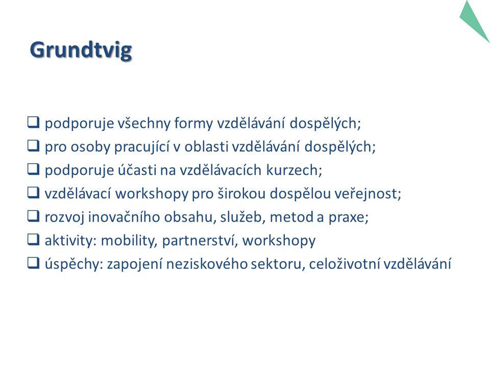 Grundtvig  podporuje všechny formy vzdělávání dospělých;  pro osoby pracující v oblasti vzdělávání dospělých;  podporuje účasti na vzdělávacích kur