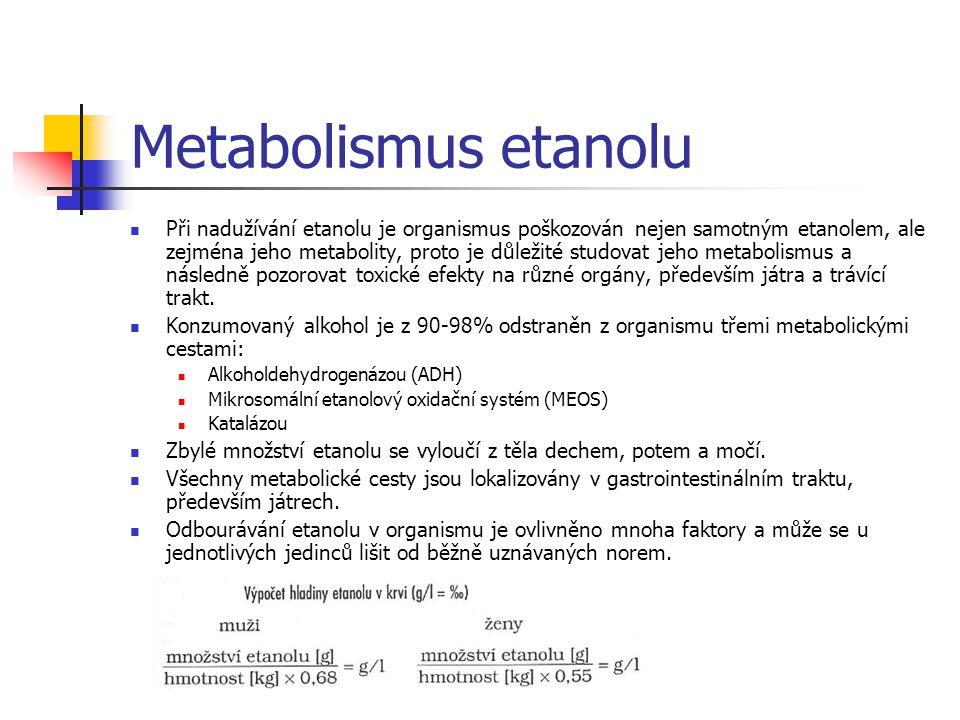 Metabolismus etanolu Metabolismus etanolu v hepatocytu ADH – alkoholdehydrogenáza KC – Krebsův cyklus MK – mastné kyseliny AK – aminokyseliny XOD – xantindehydrogenáza XD – xantinoxidáza GSH/GSSH – redukovaný/oxidovaný glutathion