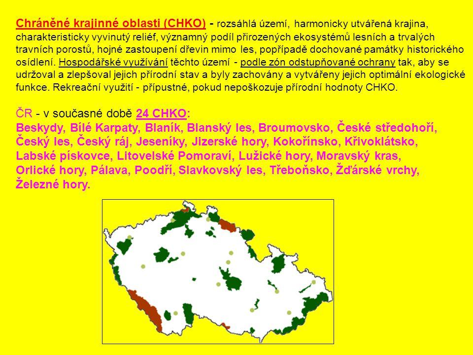 Chráněné krajinné oblasti (CHKO) - rozsáhlá území, harmonicky utvářená krajina, charakteristicky vyvinutý reliéf, významný podíl přirozených ekosystém