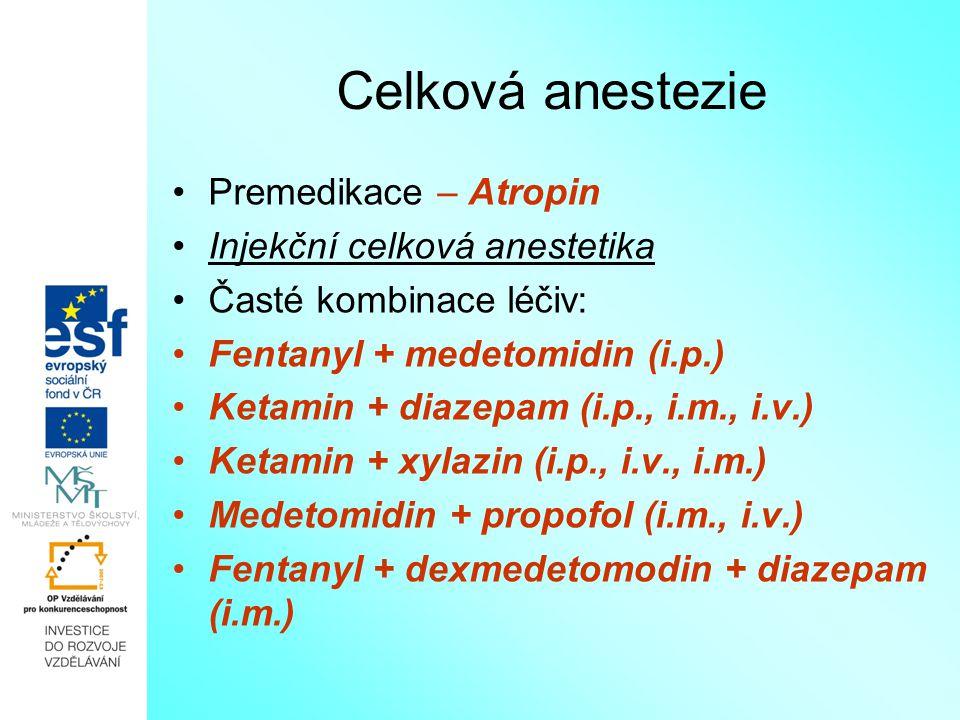 Celková anestezie Premedikace – Atropin Injekční celková anestetika Časté kombinace léčiv: Fentanyl + medetomidin (i.p.) Ketamin + diazepam (i.p., i.m