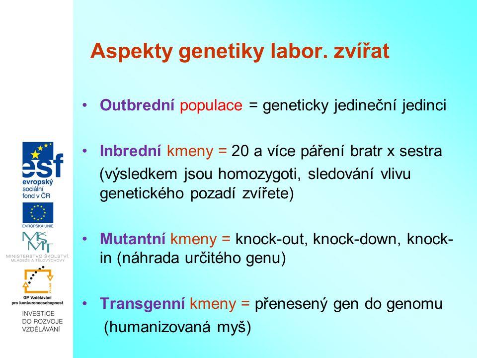 Aspekty genetiky labor. zvířat Outbrední populace = geneticky jedineční jedinci Inbrední kmeny = 20 a více páření bratr x sestra (výsledkem jsou homoz
