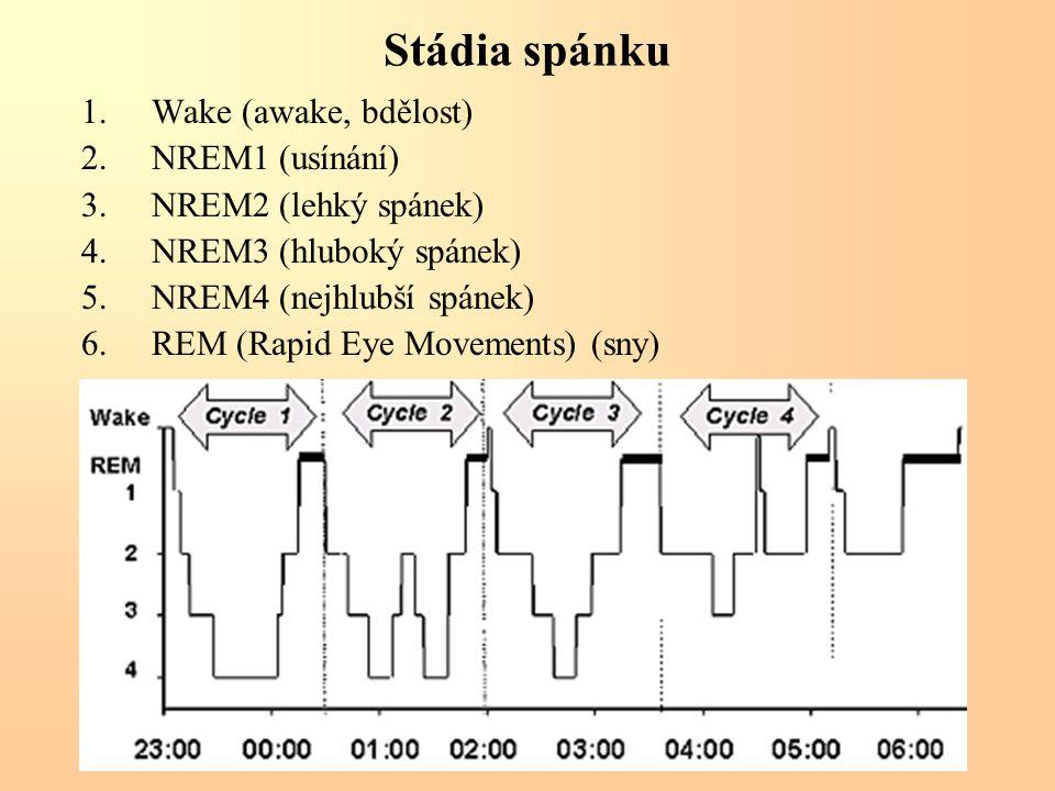 Stádia spánku 1.Wake (awake, bdělost) 2.NREM1 (usínání) 3.NREM2 (lehký spánek) 4.NREM3 (hluboký spánek) 5.NREM4 (nejhlubší spánek) 6.REM (Rapid Eye Mo