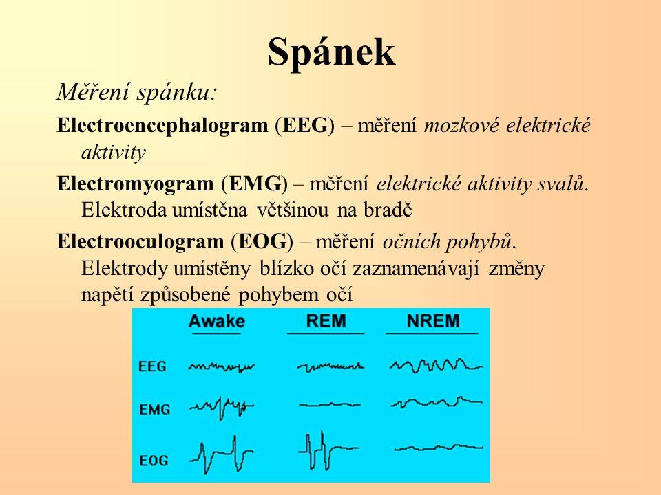 Spánek Měření spánku: Electroencephalogram (EEG) – měření mozkové elektrické aktivity Electromyogram (EMG) – měření elektrické aktivity svalů. Elektro