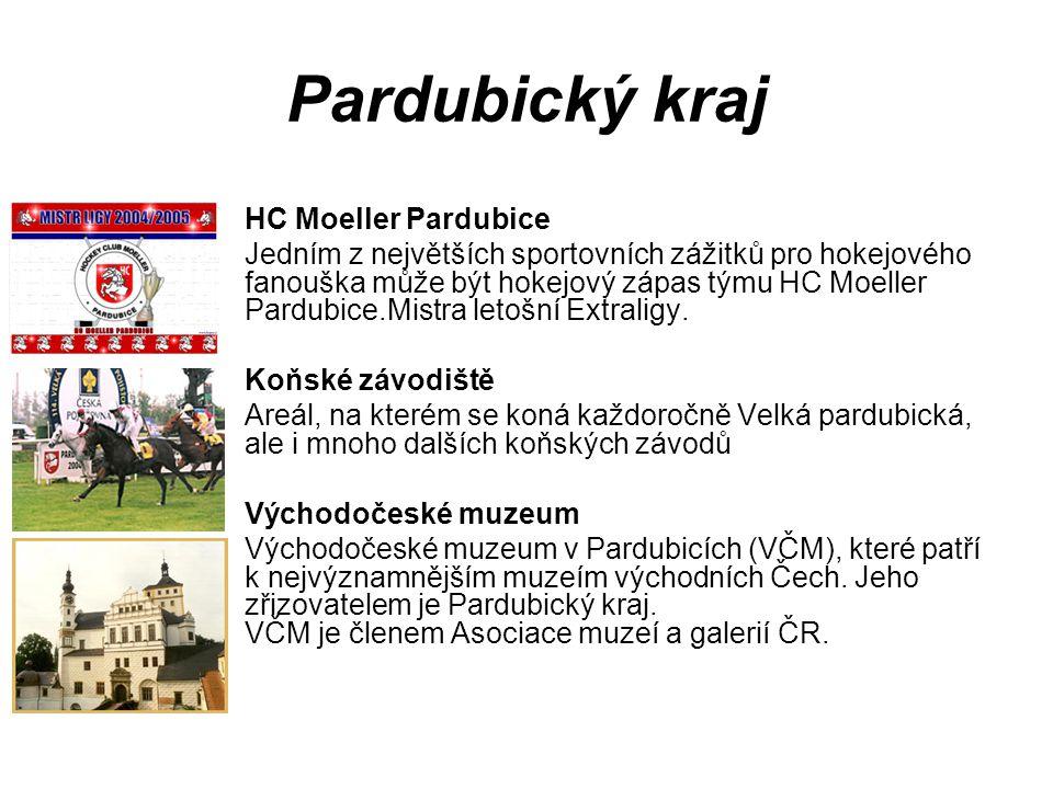 Pardubický kraj HC Moeller Pardubice Jedním z největších sportovních zážitků pro hokejového fanouška může být hokejový zápas týmu HC Moeller Pardubice