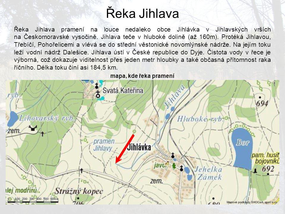 Řeka Jihlava pramení na louce nedaleko obce Jihlávka v Jihlavských vrších na Českomoravské vysočině. Jihlava teče v hluboké dolině (až 160m). Protéká