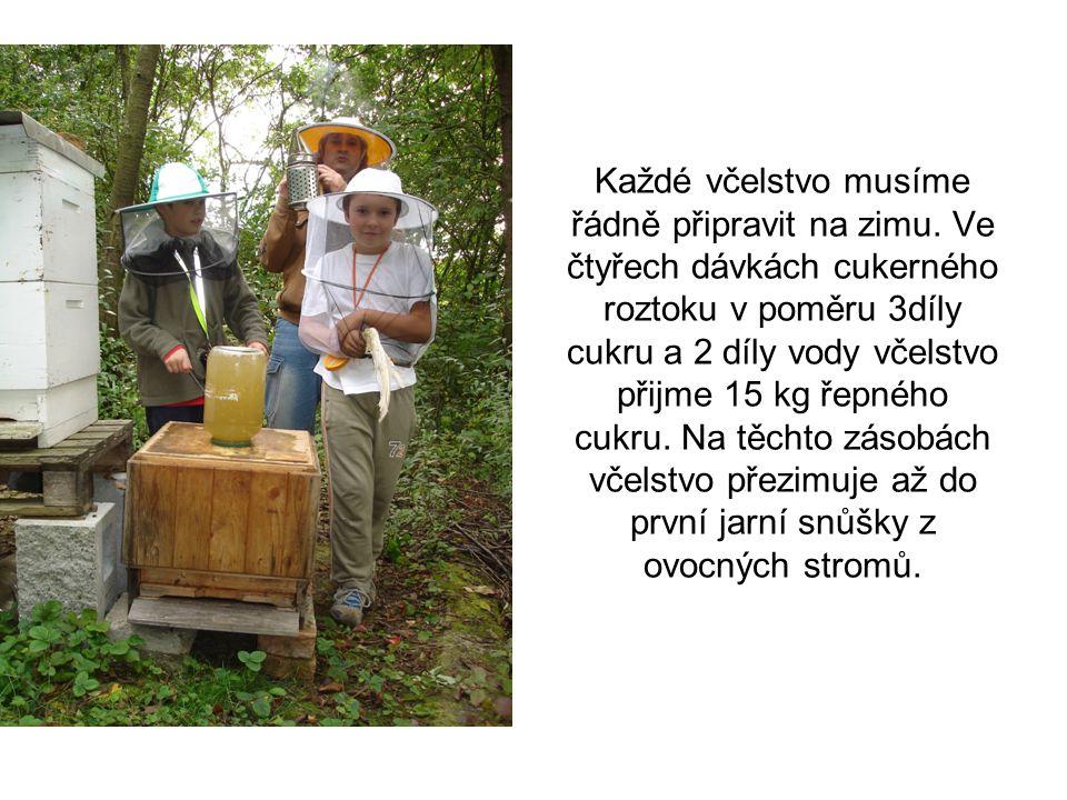 Každé včelstvo musíme řádně připravit na zimu.