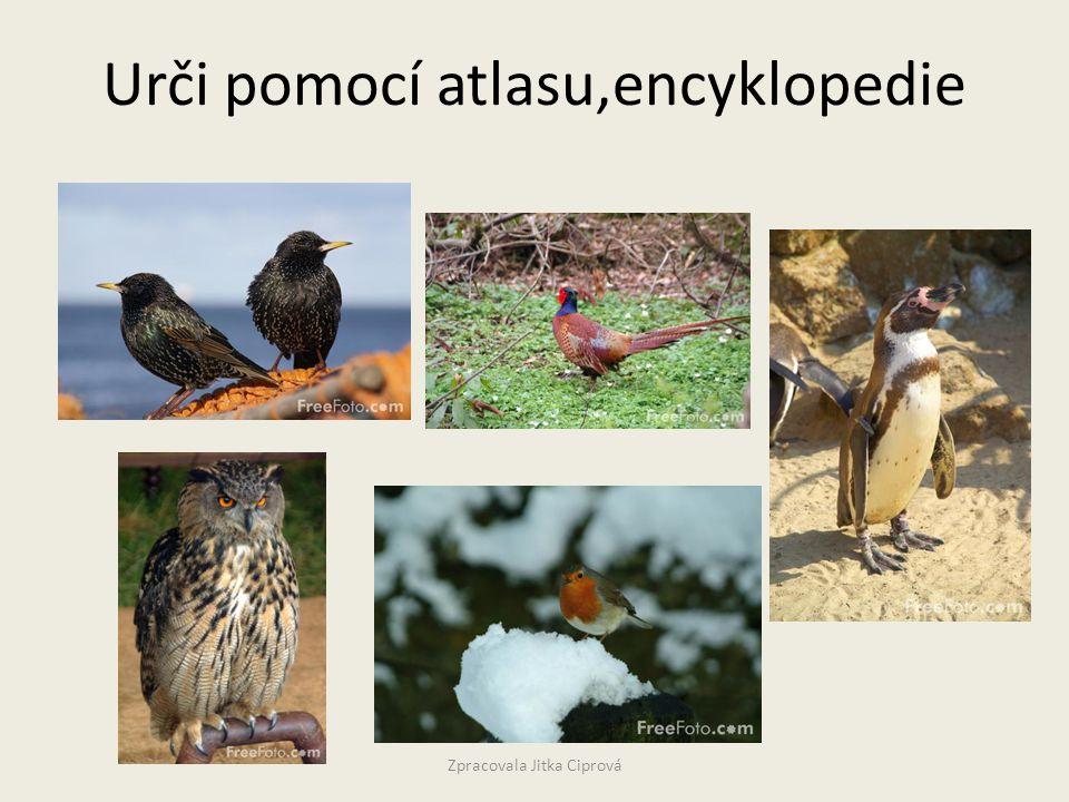 Urči pomocí atlasu,encyklopedie Zpracovala Jitka Ciprová