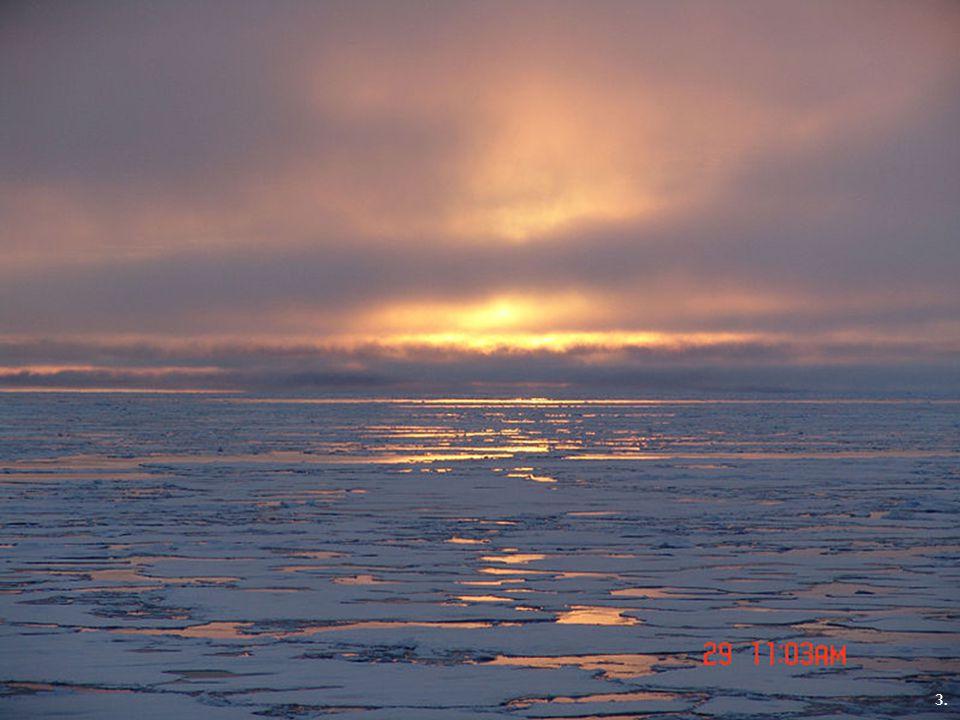 1. Severní ledový oceán 2. 3.