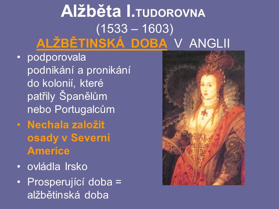 Alžběta I. TUDOROVNA (1533 – 1603) ALŽBĚTINSKÁ DOBA V ANGLII podporovala podnikání a pronikání do kolonií, které patřily Španělům nebo Portugalcům Nec