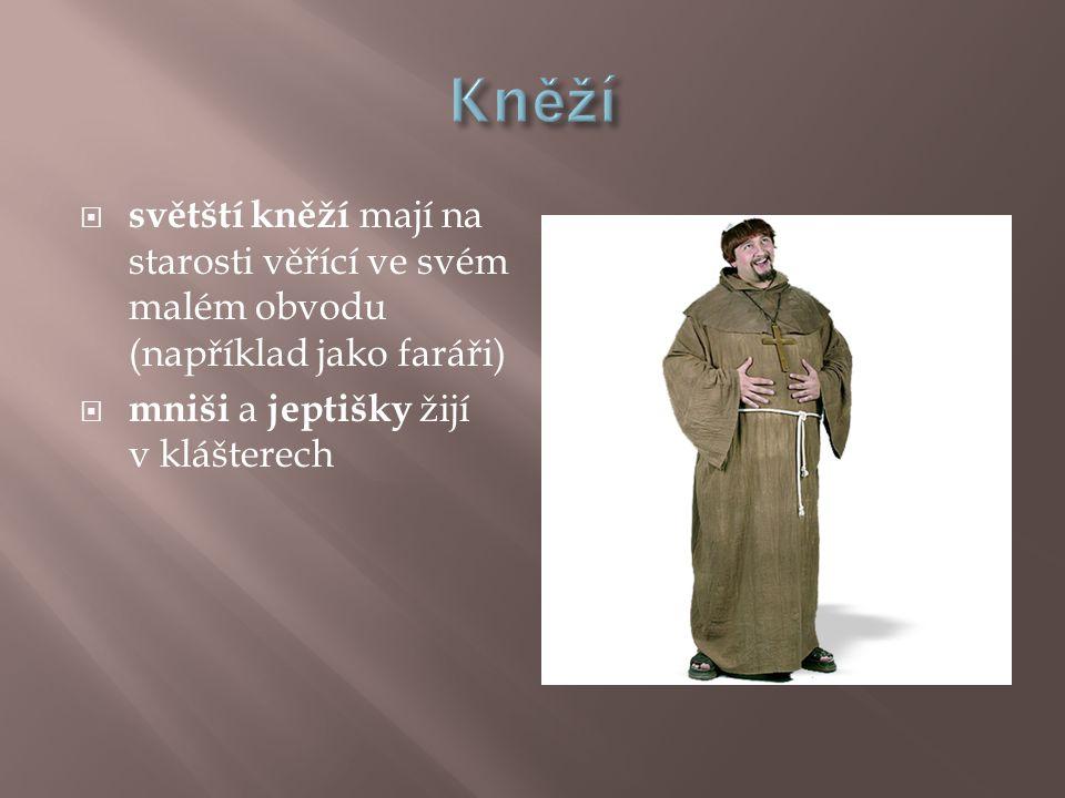  světští kněží mají na starosti věřící ve svém malém obvodu (například jako faráři)  mniši a jeptišky žijí v klášterech