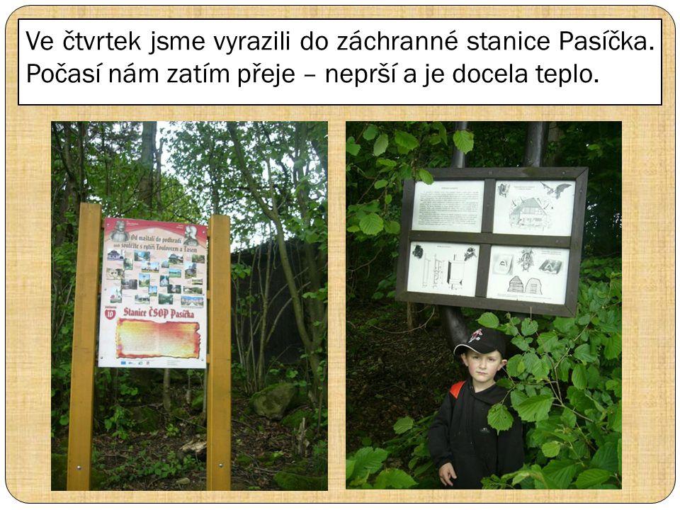 Ve čtvrtek jsme vyrazili do záchranné stanice Pasíčka.