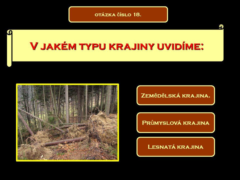 V jakém typu krajiny uvidíme: Pr ů myslová krajina Lesnatá krajina Zem ě d ě lská krajina. otázka č íslo 18.