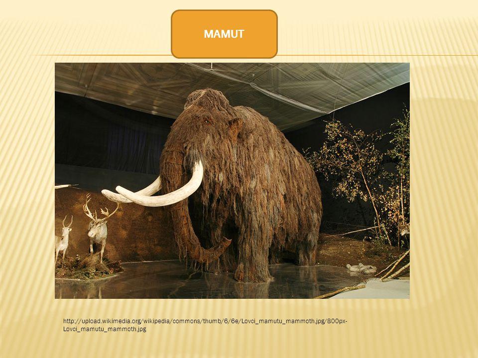 http://upload.wikimedia.org/wikipedia/commons/thumb/6/6e/Lovci_mamutu_mammoth.jpg/800px- Lovci_mamutu_mammoth.jpg MAMUT