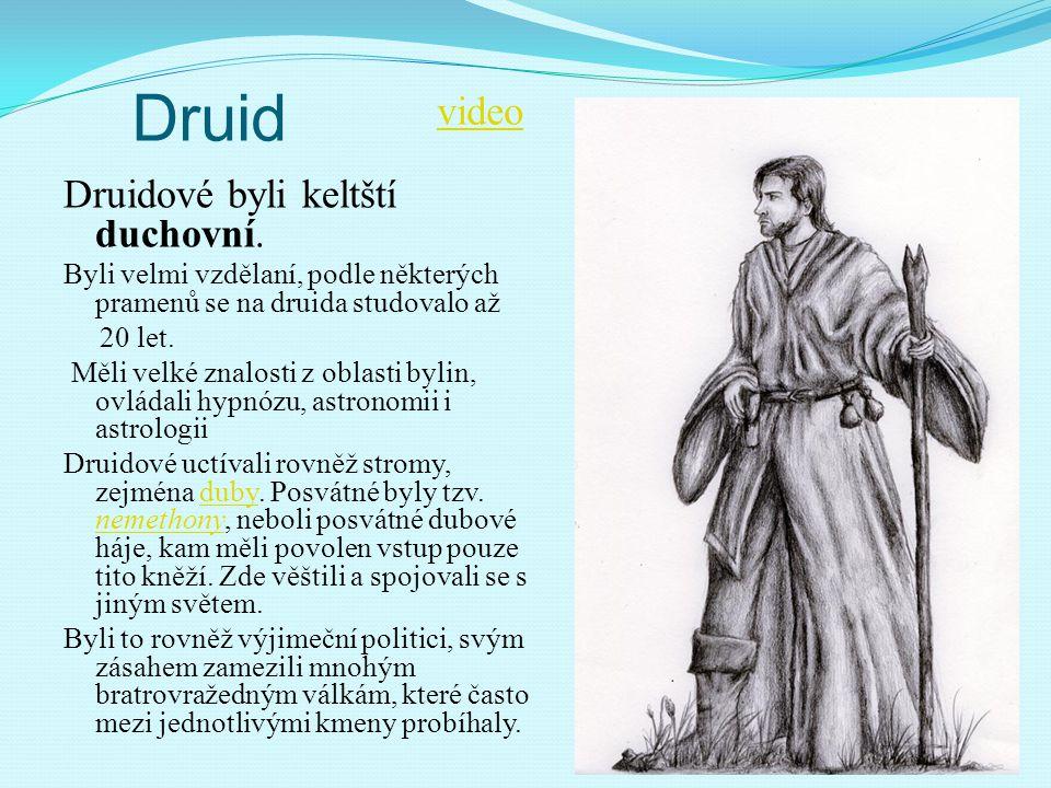 Druid Druidové byli keltští duchovní. Byli velmi vzdělaní, podle některých pramenů se na druida studovalo až 20 let. Měli velké znalosti z oblasti byl