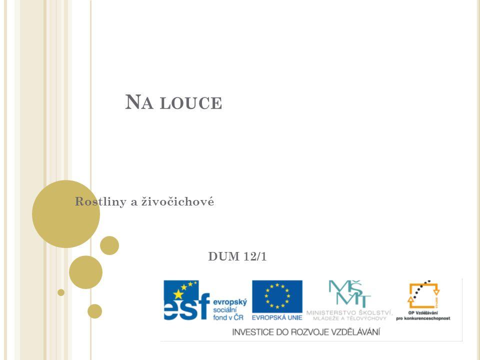 """Tento výukový materiál byl vytvořen v rámci projektu """" EU-peníze Autor: Mgr."""