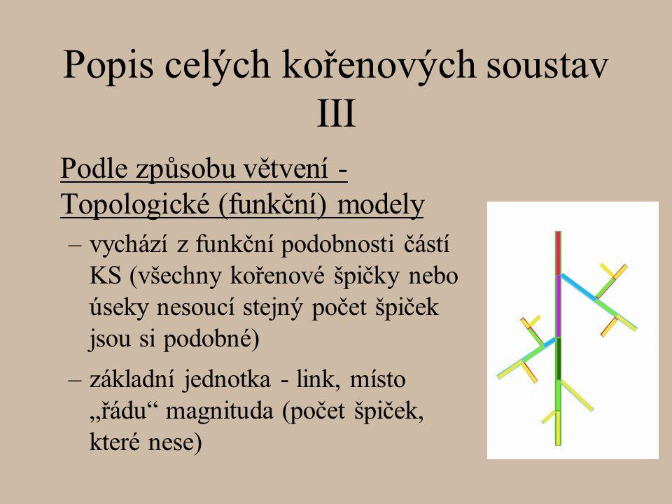 """Popis celých kořenových soustav III Podle způsobu větvení - Topologické (funkční) modely –vychází z funkční podobnosti částí KS (všechny kořenové špičky nebo úseky nesoucí stejný počet špiček jsou si podobné) –základní jednotka - link, místo """"řádu magnituda (počet špiček, které nese)"""