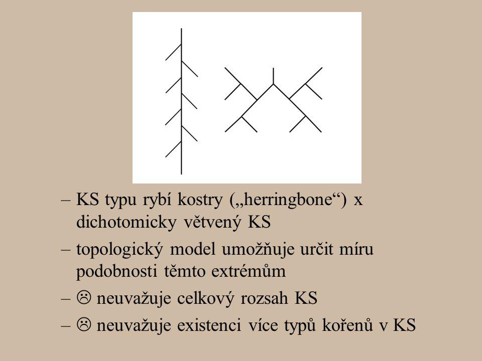 "–KS typu rybí kostry (""herringbone ) x dichotomicky větvený KS –topologický model umožňuje určit míru podobnosti těmto extrémům –  neuvažuje celkový rozsah KS –  neuvažuje existenci více typů kořenů v KS"