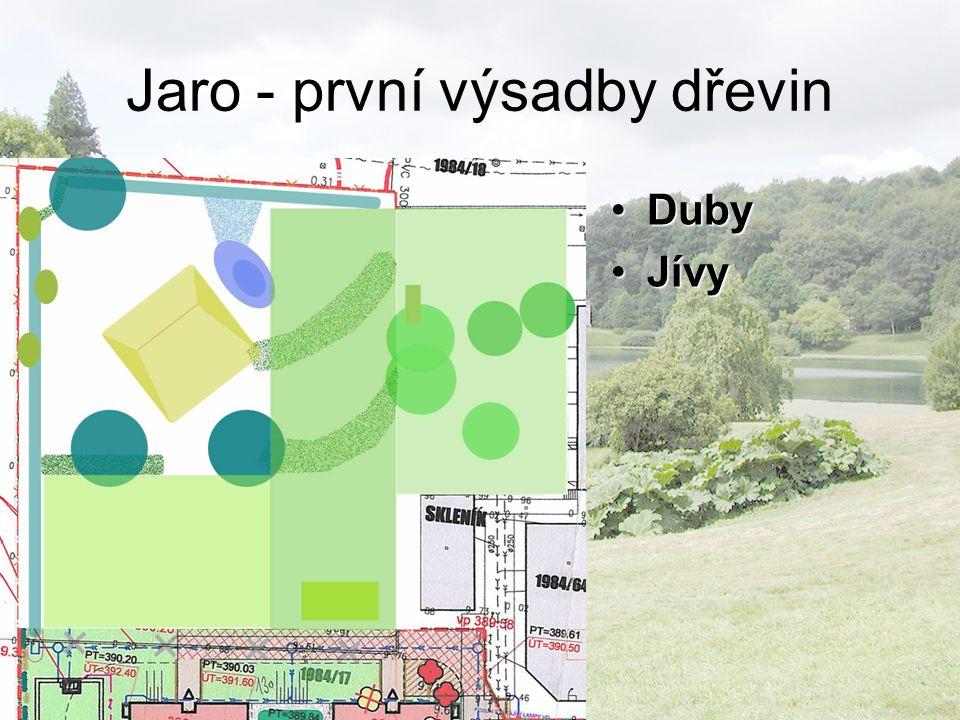 Jaro - první výsadby dřevin DubyDuby JívyJívy