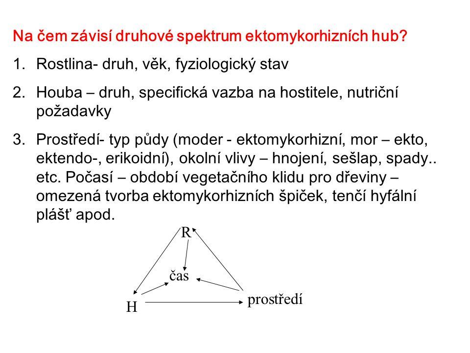 Na čem závisí druhové spektrum ektomykorhizních hub? 1.Rostlina- druh, věk, fyziologický stav 2.Houba – druh, specifická vazba na hostitele, nutriční