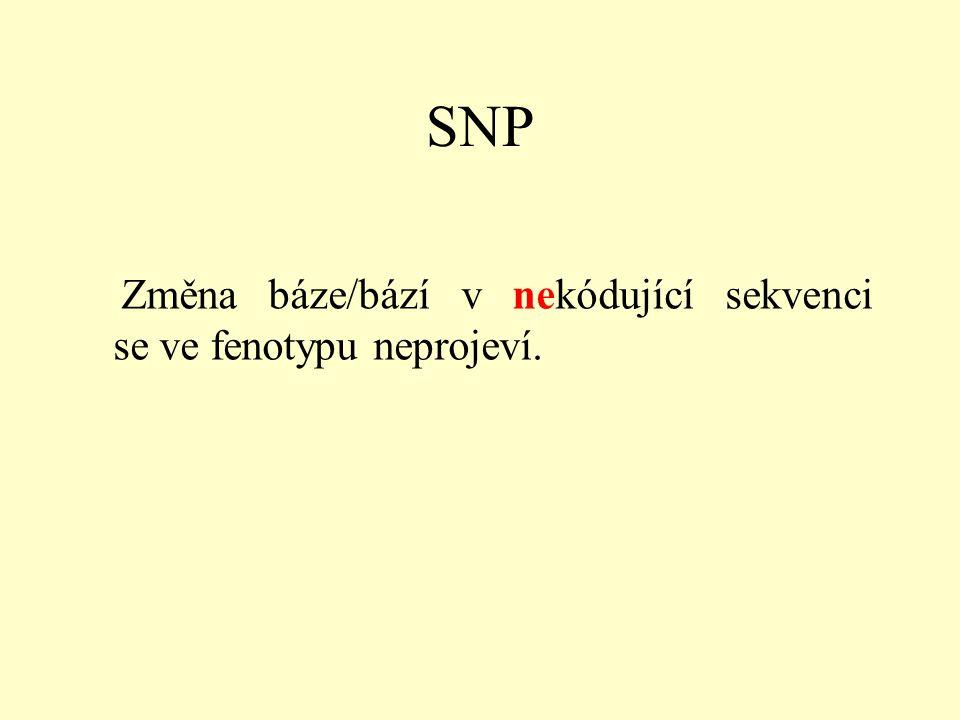 SNP Změna báze/bází v nekódující sekvenci se ve fenotypu neprojeví.