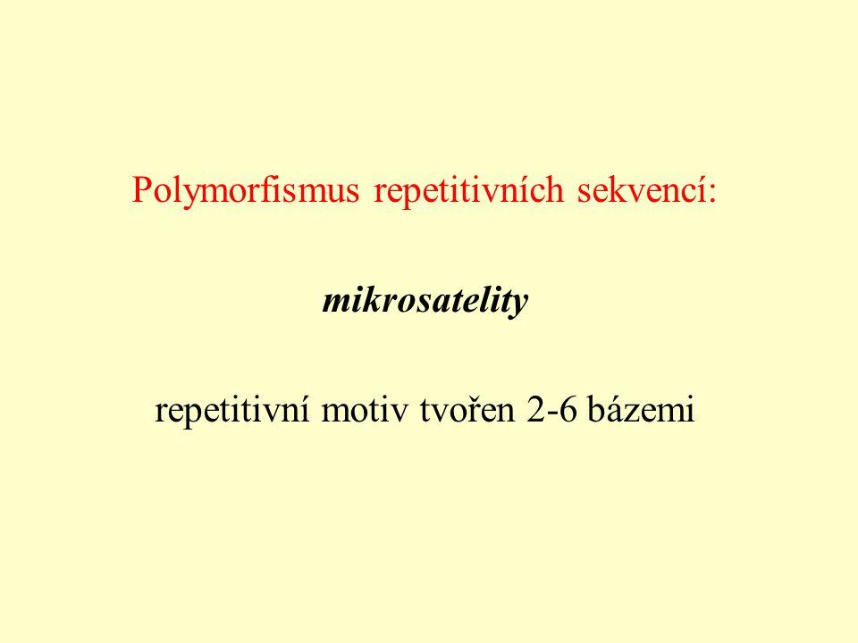 Polymorfismus repetitivních sekvencí: mikrosatelity repetitivní motiv tvořen 2-6 bázemi