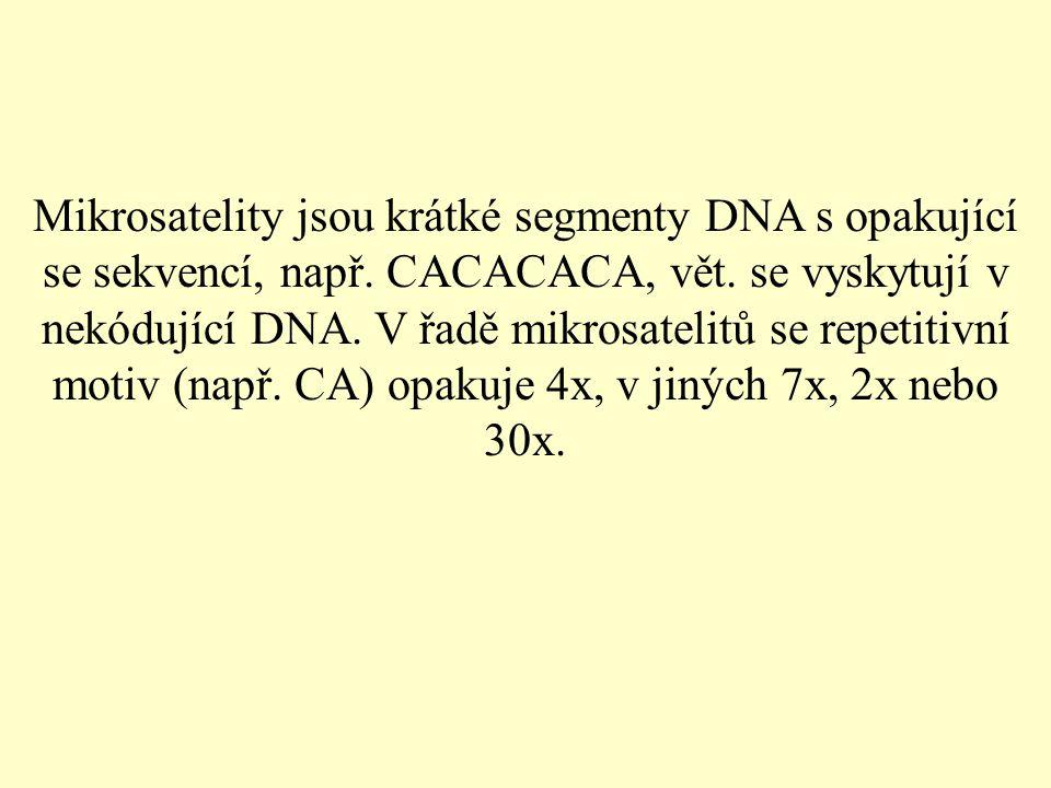 Mikrosatelity jsou krátké segmenty DNA s opakující se sekvencí, např.