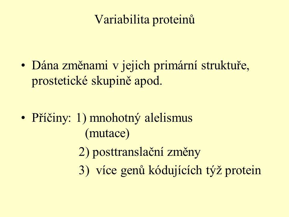 Dána změnami v jejich primární struktuře, prostetické skupině apod.