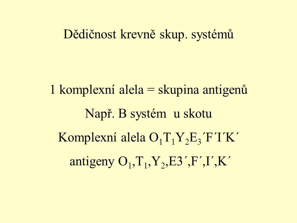 Dědičnost krevně skup.systémů 1 komplexní alela = skupina antigenů Např.