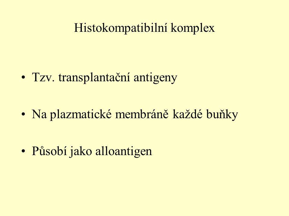 Tzv. transplantační antigeny Na plazmatické membráně každé buňky Působí jako alloantigen Histokompatibilní komplex