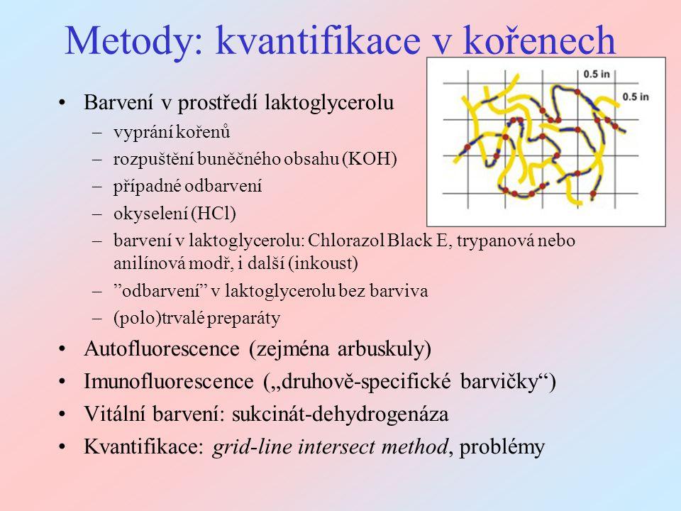 Metody: kvantifikace v kořenech Barvení v prostředí laktoglycerolu –vyprání kořenů –rozpuštění buněčného obsahu (KOH) –případné odbarvení –okyselení (