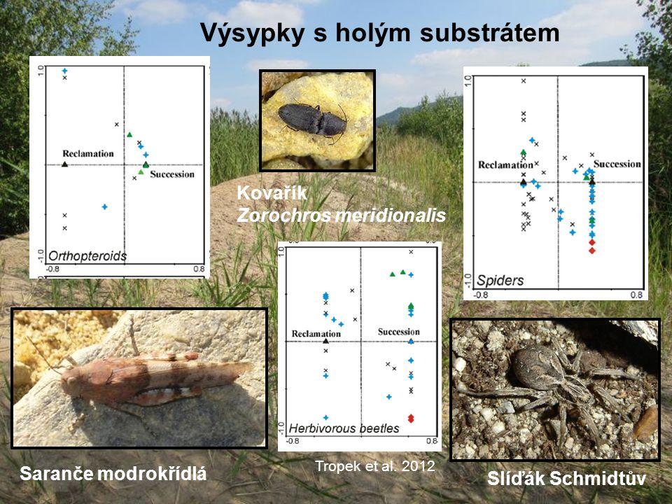 Výsypky s holým substrátem Saranče modrokřídlá Slíďák Schmidtův Kovařík Zorochros meridionalis Tropek et al. 2012