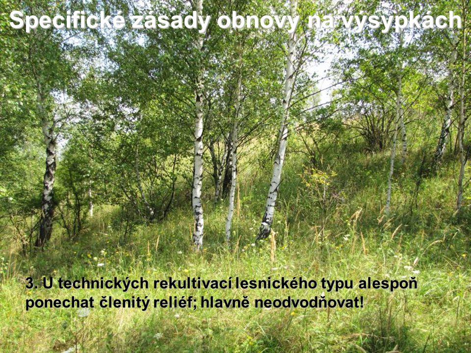 Specifické zásady obnovy na výsypkách 3. U technických rekultivací lesnického typu alespoň ponechat členitý reliéf; hlavně neodvodňovat!