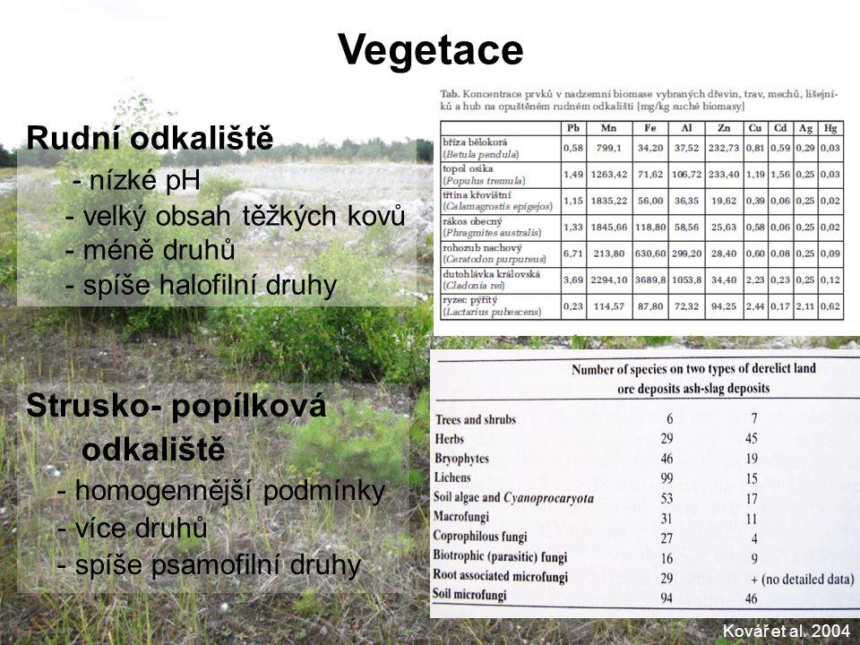 Vegetace Strusko- popílková odkaliště - homogennější podmínky - více druhů - spíše psamofilní druhy Kovář et al. 2004 Rudní odkaliště - nízké pH - vel