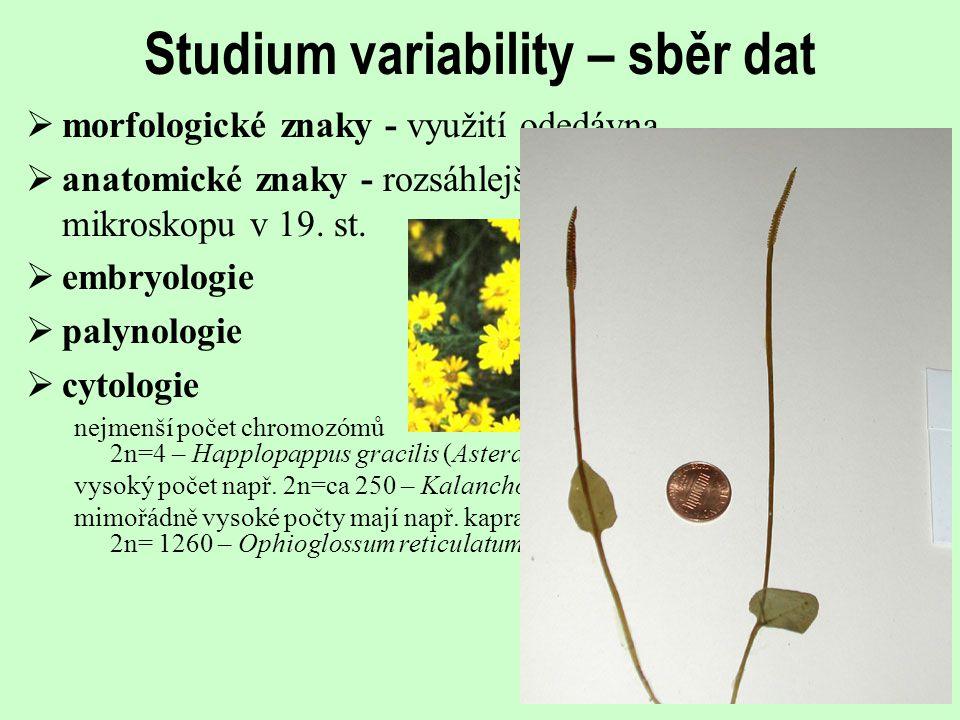 Systematicky významné obsahové látky  sekundární metabolity  taxonomické využití již století  např.