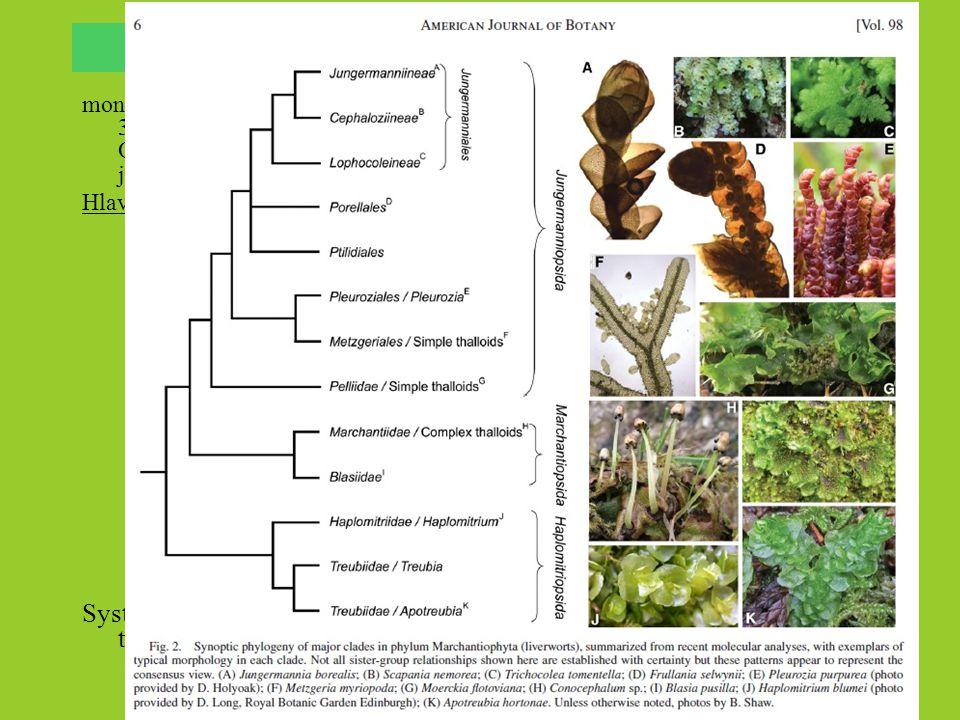 Játrovky (Marchantiophyta) monofyletická, velmi diverzifikovaná skupina mechorostů s asi 5-9 tis. druhy v asi 300-400 rodech. Nejstarší známé fosílie