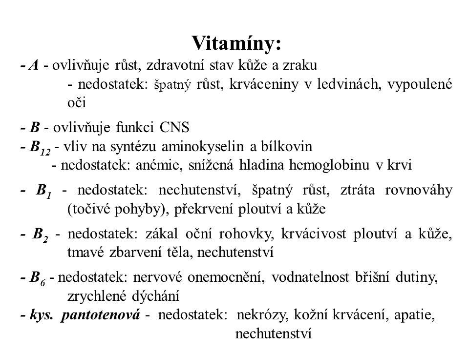 Vitamíny: - A - ovlivňuje růst, zdravotní stav kůže a zraku - nedostatek: špatný růst, krváceniny v ledvinách, vypoulené oči - B - ovlivňuje funkci CNS - B 12 - vliv na syntézu aminokyselin a bílkovin - nedostatek: anémie, snížená hladina hemoglobinu v krvi - B 1 - nedostatek: nechutenství, špatný růst, ztráta rovnováhy (točivé pohyby), překrvení ploutví a kůže - B 2 - nedostatek: zákal oční rohovky, krvácivost ploutví a kůže, tmavé zbarvení těla, nechutenství - B 6 - nedostatek: nervové onemocnění, vodnatelnost břišní dutiny, zrychlené dýchání - kys.