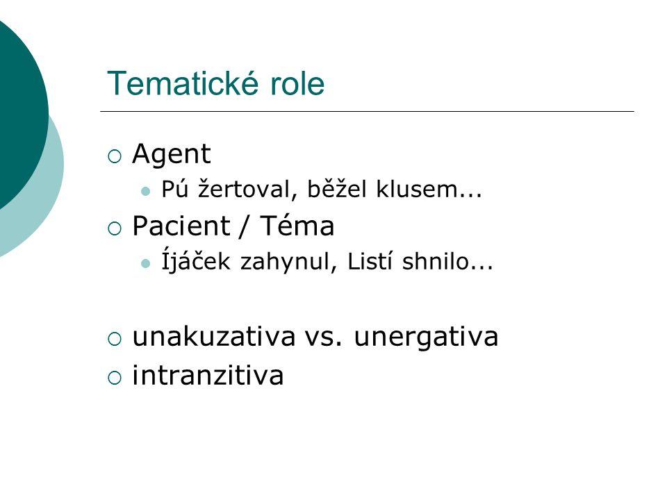 Tematické role  Agent Pú žertoval, běžel klusem...