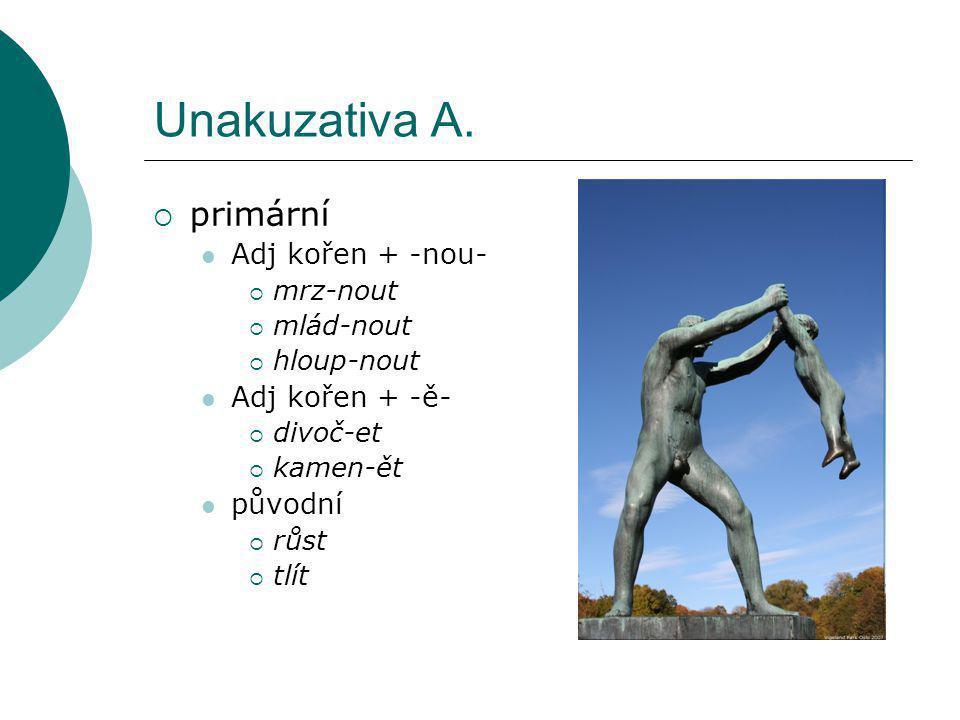 Unakuzativa A.  primární Adj kořen + -nou-  mrz-nout  mlád-nout  hloup-nout Adj kořen + -ě-  divoč-et  kamen-ět původní  růst  tlít